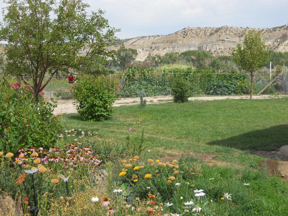 Rosewood - garden sm